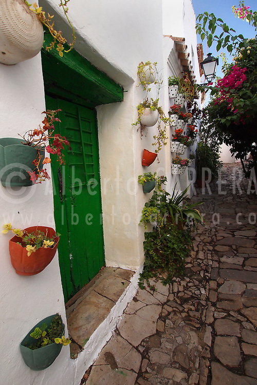 Alberto Carrera, Old Town, Castellar de la Frontera, Cádiz Province, Andalusia, Spain, Europe