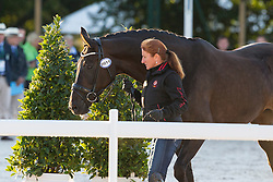 Claudia Fassaert, (BEL), Donnerfee - Horse Inspection Dressage - Alltech FEI World Equestrian Games™ 2014 - Normandy, France.<br /> © Hippo Foto Team - Leanjo de Koster<br /> 25/06/14