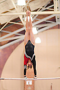 January 17, 2010; Stanford, CA, USA; Stanford Cardinal gymnast Shelley Alexander performs on the bars during the meet against the Arizona Wildcats at Burnham Pavilion. The Cardinal defeated the Wildcats 196.025-194.675. Mandatory Credit: Kyle Terada-Terada Photo