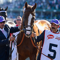May 3, 2014:  California Chrome, trained by Art Sherman and ridden by Victor Espinoza win the Kentucky Derby 140 at Churchill Downs in Louisville, KY. Eric Patterson/ESW/CSM