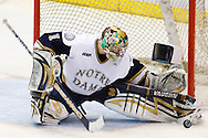 21 March 2009:  in action in the CCHA championship playoffs at Joe Louis Arena Detroit, MI. Michigan v Notre Dame in the championship game. Notre Dame defeated Michigan 4-2.