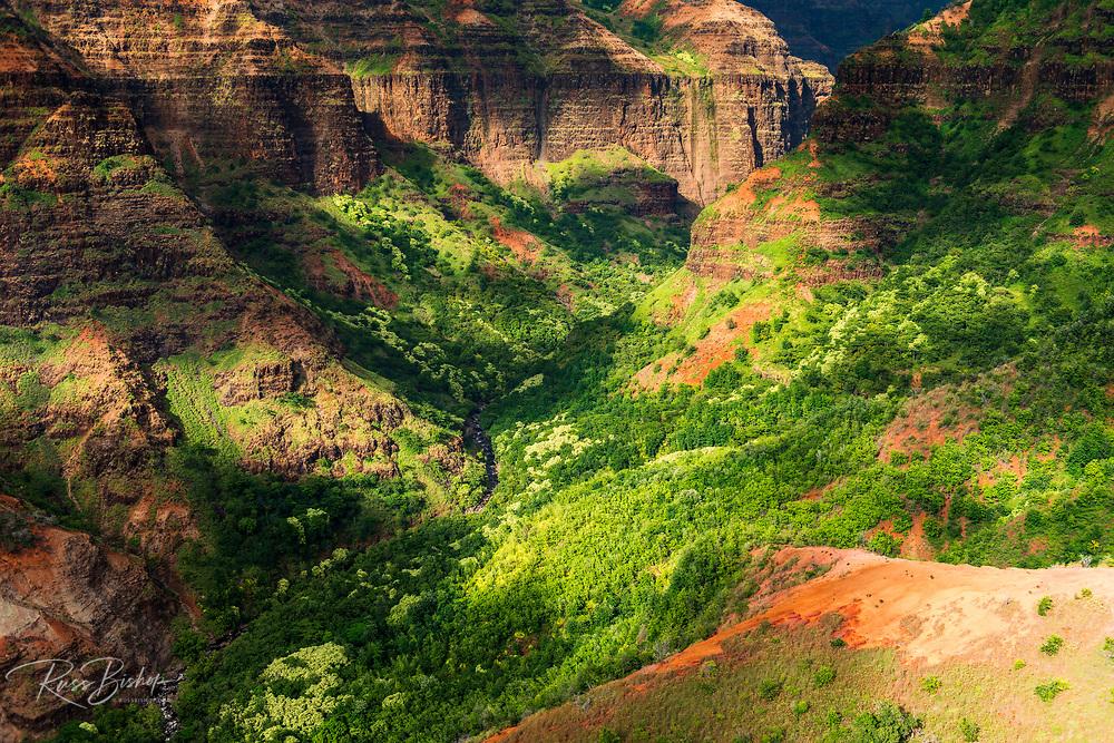Waimea Canyon (aerial), Waimea Canyon State Park, Kauai, Hawaii USA