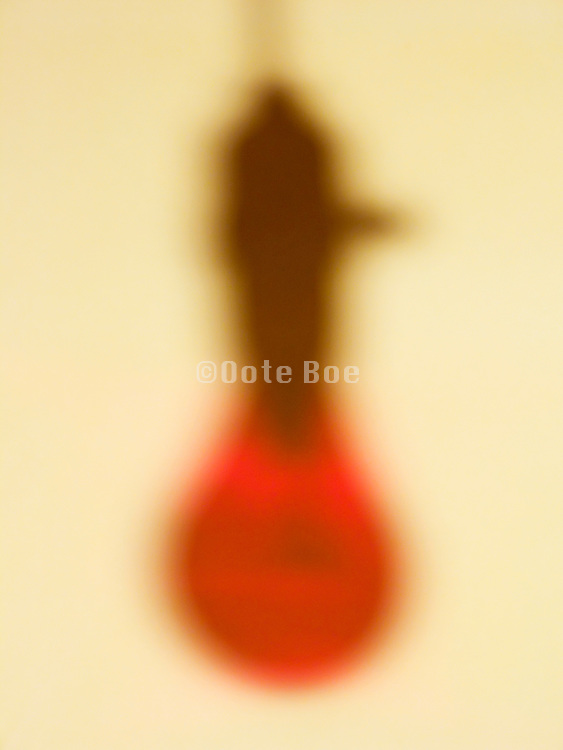 shadow of a hanging bare red light bulb in socket