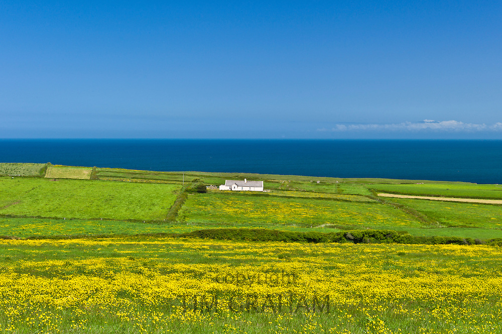 Traditional cottage on the Atlantic coast at Killard, County Clare, West Coast of Ireland