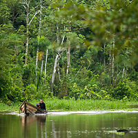 A Peruvian man motors down Pahuachiro Caño in his wooden canoe. Pacaya Samiria National Reserve, Upper Amazon, Peru.
