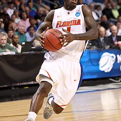 Mar 17, 2011; Tampa, FL, USA; Florida Gators guard Kenny Boynton (1)  during first half of the second round of the 2011 NCAA men's basketball tournament against the UC Santa Barbara Gauchos at the St. Pete Times Forum.  Mandatory Credit: Derick E. Hingle