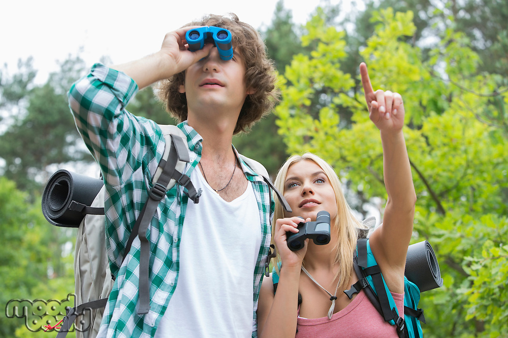 Male hiker using binoculars while girlfriend showing something in forest