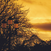 Iconic Dublin Street Light back lit by a golden Sunset over Dublin at Stephen's Green