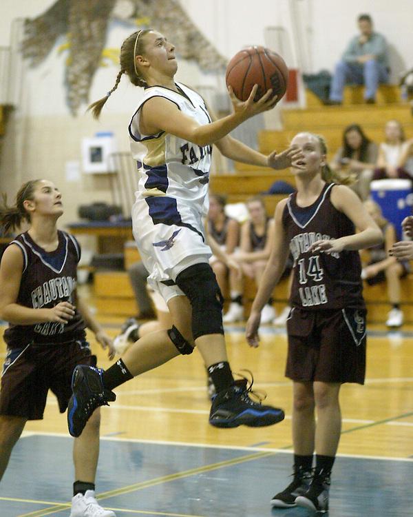 Falconer High School sports