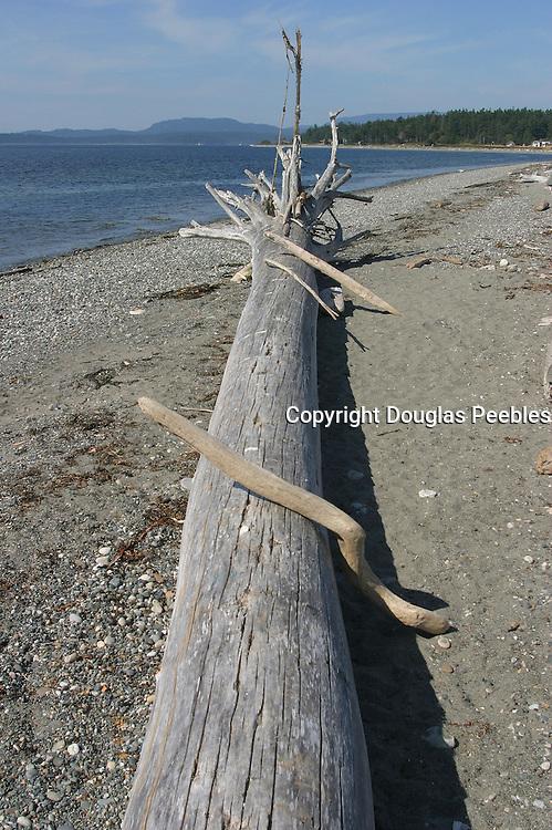 Lopez Island, San Juan Islands, Washington<br />
