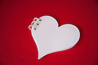 Heart shaped notebook