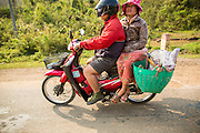 12 MARCH 2013 - ALONG HIGHWAY 13, LAOS:  A couple on a motorcycle heads north on Highway 13. The paving of Highway 13 from Vientiane to near the Chinese border has changed the way of life in rural Laos. Villagers near Luang Prabang used to have to take unreliable boats that took three hours round trip to get from the homes to the tourist center of Luang Prabang, now they take a 40 minute round trip bus ride. North of Luang Prabang, paving the highway has been an opportunity for China to use Laos as a transshipping point. Chinese merchandise now goes through Laos to Thailand where it's put on Thai trains and taken to the deep water port east of Bangkok. The Chinese have also expanded their economic empire into Laos. Chinese hotels and businesses are common in northern Laos and in some cities, like Oudomxay, are now up to 40% percent. As the roads are paved, more people move away from their traditional homes in the mountains of Laos and crowd the side of the road living off tourists' and truck drivers.    PHOTO BY JACK KURTZ