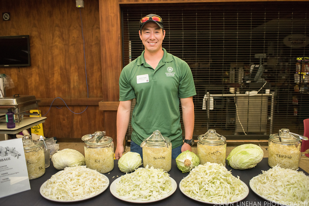 CABBAGE<br /> Curator: Jensen Uyeda, UH Cooperative Extension Farmers: GoFarm Hawai'i Cohort 8 Windward AgPro