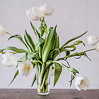 a bunch of white tulips in a glass vase