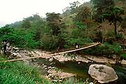 MEXICO, LANDSCAPES, CHIAPAS STATE Lush jungle mountain scenery on Tabasco/Chiapas border near village of Ixhuapan; suspension bridge