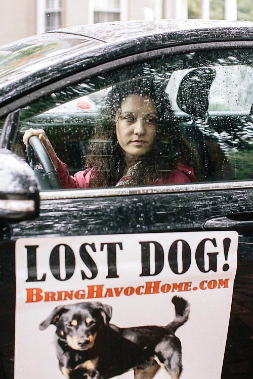 Janet Mihalyfi puts up signage about her lost dog Havoc in neighborhoods where the most recent sightings have been. Havoc, a five-year-old black and tan mix breed, has been missing for almost a year, and Mihalyfi has spent nearly $30,000 to try and find her.