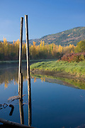 Idaho,North, Boundary County, Bonners Ferry. Pilings jut from the calm tree lined waters of Deep Creek in the Bonner Valley in autumn. PLEASE CONTACT US FOR DIGITAL DOWNLOAD AND PRICING.
