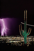 Summer lightning storm over Tucson, Arizona from Tumamoc Hill with Saguaro cactus. Storms erupt regularly during Arizona summers due to the moist air that flows in from the Gulf of California then collides with nearby mountains and is forced upward, where it condenses into thunderclouds. ..Lightning occurs when a large electrical charge builds up in a cloud, probably due to the friction of water and ice particles. The charge induces an opposite charge on the ground, and a few leader electrons travel to the ground. When one makes contact, there is a huge backflow of energy up the path of the electron. This produces a bright flash of light, and temperatures of up to 30,000 degrees Celsius. Tucson, Arizona, USA. (1992)