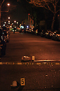 6 December 2009- Clinton Hill Section of Brooklyn, NY- A 51 year-old longtime active community resident was shot in the head and pronouced dead on the scene in the Clinton Hill Section of Brooklyn tonight. The woman was investigating a commotion or augument outside her home when the two alleged men pulled guns and starting shooting in this working class Brooklyn neighborhood. A bullet hit the 51year-old in the head killing her. The ensuing gun battle also hit a 14 year-old boy in the leg. He was later rushed to Kings County Hospital and is reported in stable condition.
