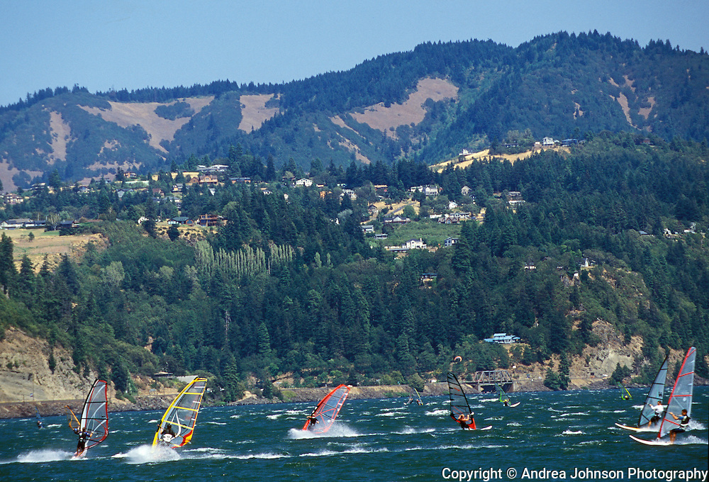 Windsurfers near Hood River with White Salmon, Washington in background, Columbia River Gorge.