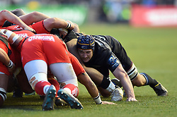 Paul Grant of Bath Rugby in action at a scrum - Mandatory byline: Patrick Khachfe/JMP - 07966 386802 - 09/12/2017 - RUGBY UNION - Stade Mayol - Toulon, France - Toulon v Bath Rugby - European Rugby Champions Cup