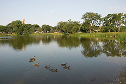 Minnesota, Twin Cities, Minneapolis-Saint Paul: Loring Park and lake in Minneapolis..Photo mnqual229-75131..Photo copyright Lee Foster, www.fostertravel.com, 510-549-2202, lee@fostertravel.com.
