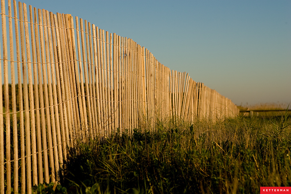 A fence along the sawgrass at the beach.