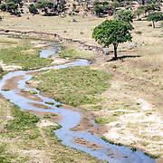 Elevated view of the Tarangire River at Tarangire National Park in northern Tanzania not far from Ngorongoro Crater and the Serengeti.
