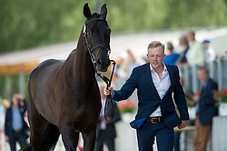 Romeike Claas Herman, (GER), Cato 60<br /> First Horse Inspection <br /> CCI4* Luhmuhlen 2016 <br /> © Hippo Foto - Jon Stroud