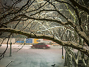10 JANUARY 2020 - DES MOINES, IOWA: Snow blankets tree limbs over a street in downtown Des Moines during a snowstorm Friday. The first significant snow in two months blanketed Des Moines Friday evening. Meteorologists are predicting up to six inches of snow overnight and have issued a winter storm warning for southern and central Iowa. Most schools in the affected area closed early and cancelled afternoon events. Some presidential candidates, campaigning ahead of the Iowa Caucuses, cancelled their events.      PHOTO BY JACK KURTZ