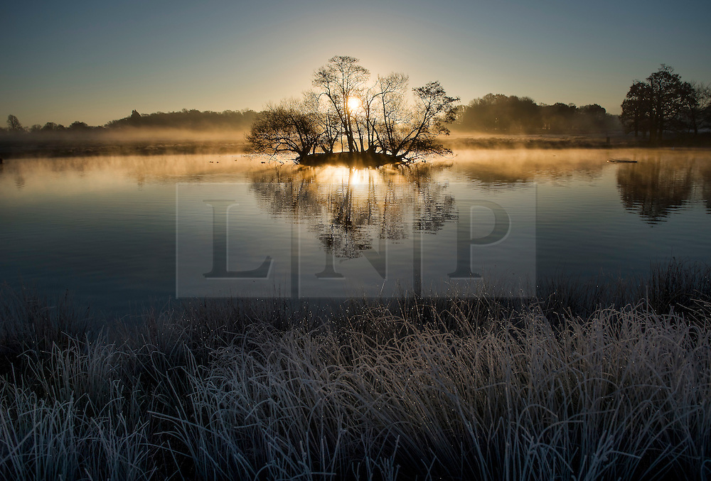 © Licensed to London News Pictures. 29/11/2016. London, UK. The sunrises through mist and frost covering the landscape in Richmond Park, London as temperatures in the UK plummet. Sub zero temperatures are due to spread to the south east this week as winter starts to set in. Photo credit: Ben Cawthra/LNP