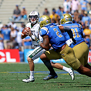 Hawaii QB, Dru Brown, runs to escape Bruin Defensive Lineman Jacob Tuioti-Mariner in the 2nd quarter of the UCLA vs Hawaii football game at the Rose Bowl, Pasadena, California.  Jacob Tuioti-Mariner is the brother of former UH Offensive Lineman, Lafu Tuioti Mariner.  Photo by Barry Markowitz, 9/9/17