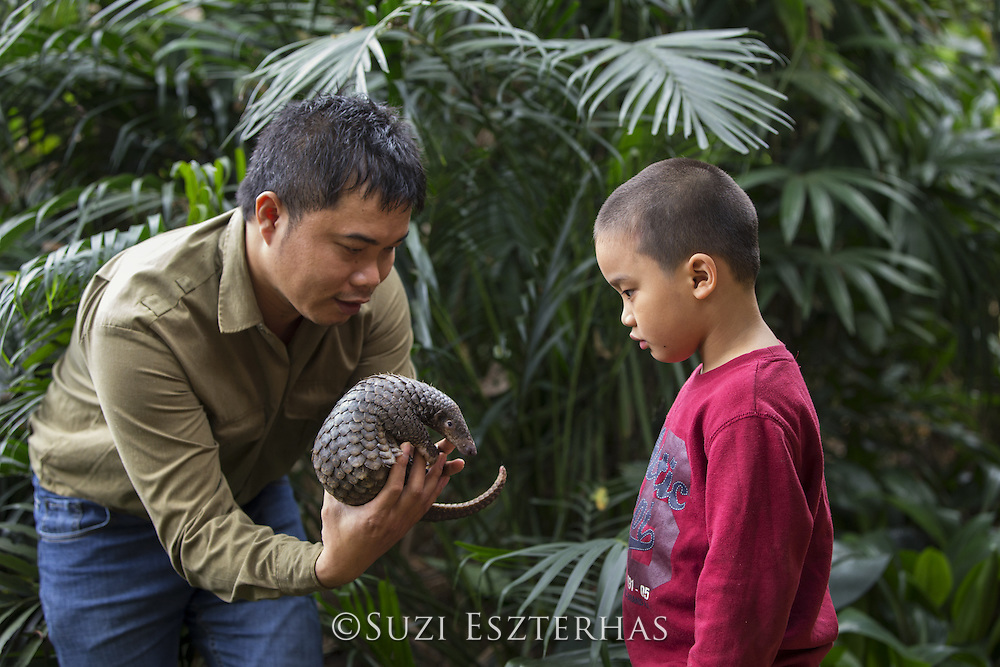 Sunda pangolin <br /> Manis javanica<br /> Thai Van Nguyen, Executive Director of Save Vietnam's Wildlife, showing rescued three-month-old baby to young boy <br /> Carnivore and Pangolin Conservation Program, Cuc Phuong National Park, Vietnam<br /> *Captive - rescued from poachers