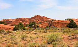 Rocky Hill, Arches National Park, Utah, USA