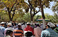 March 22, 2019 - Gurugram, Haryana, India - Muslims offer Friday prayers under the shade of Trees on a Hot summer day in Gurugram, Haryana, India, on 22 March, 2019. (Credit Image: © Nasir Kachroo/NurPhoto via ZUMA Press)