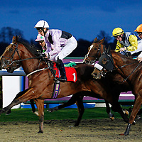 Kempton 31st October 2012