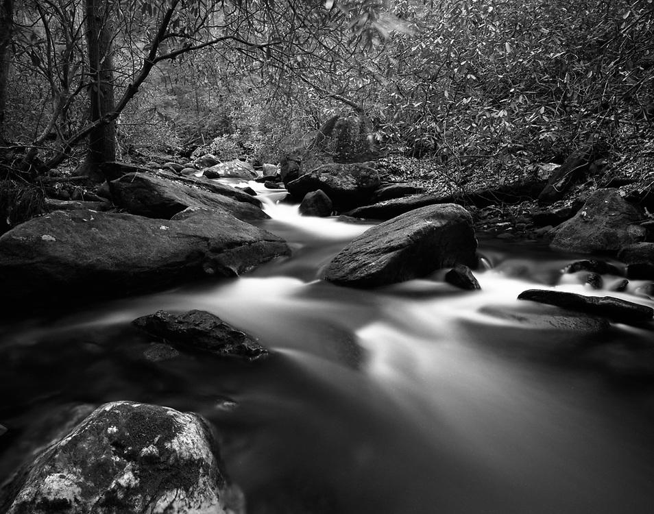 Lovinggood Creek - North Georgia - Chattahoochee National Forest - Mamiya 7II/43m lens/Ilford Film