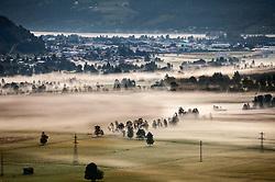 THEMENBILD - Felder, das Kapruner und Zeller Moos am fruehen Morgen mit Nebelschwaden verhangen, im Hintergrund Schuettdorf mit dem Zeller See. Bild aufgenommen am 19.08.2012. EXPA Pictures © 2012, PhotoCredit: EXPA/ Juergen Feichter