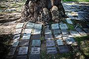 Los Angeles, April 8 2012- At Westwood Village Memorial Park Cemetery, where Marilyn Monroe is interred.