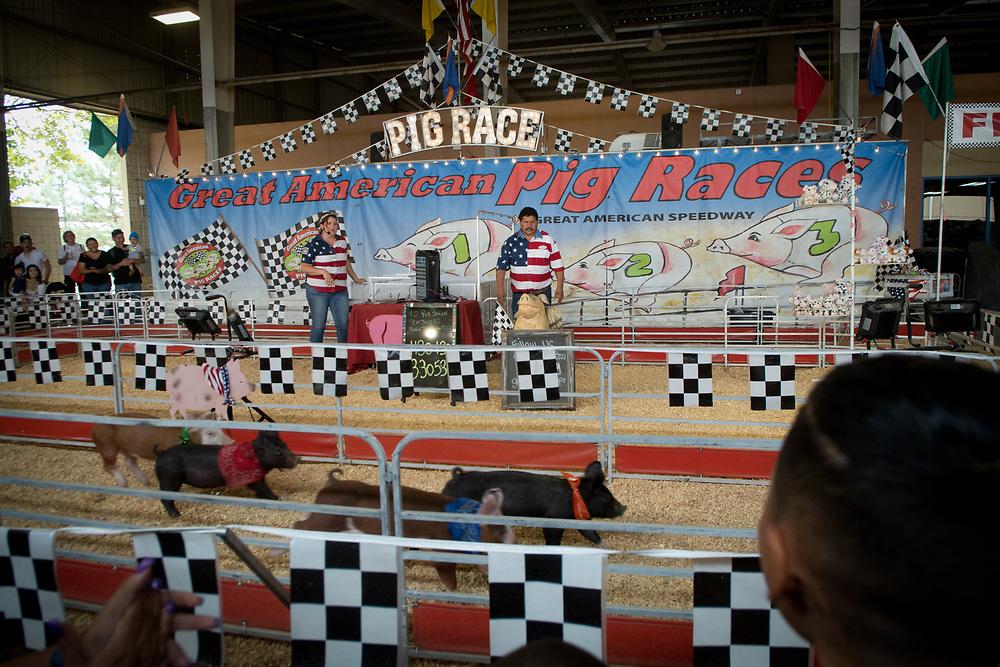 New Mexico State Fair, Sept. 14, 2017 (Marla Brose/Albuquerque Journal)