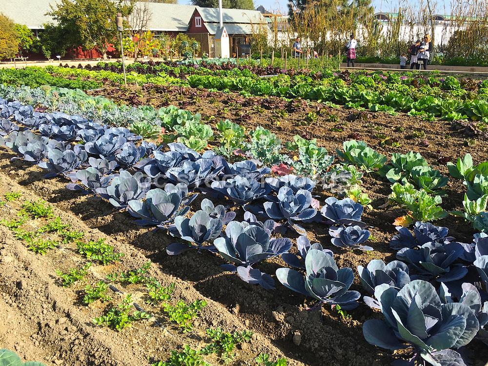 Centennial Farm Demonstration Garden At OC Fair And Event Center