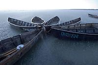 Five fishing boats tied to tree stump, Lake Belau,  Moldova, June 2009