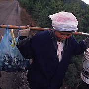"Laotian immigrant ""Yai"" uses traditional methods to transport her harvest from the Willamette National Forest in Oregon. A good picker can easily earn an average of several hundred dollars per day. Matsutake mushrooms are picked during October and November. More than 2,000 pickers participate in the 60-day harvest. Most of the pickers are immigrants from Laos, Cambodia, Vietnam, China and Japan. Please contact Todd Bigelow directly with your licensing requests."