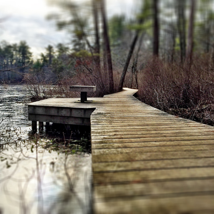 An early morning walk along the wooden walkway at Gordon Pond within the Norris Reservation in Norwell, Massachusetts
