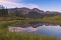 Sunrise reflections of 13,077 ft. Snowdon Peak in a alpine tarn on Molas Pass.  San Juan Mountains, Colorado, USA.