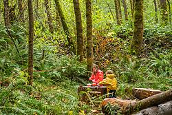 United States, Washington, Bellevue, Cougar Mountain Regional Wildland Park, Tiny Trees Preschool