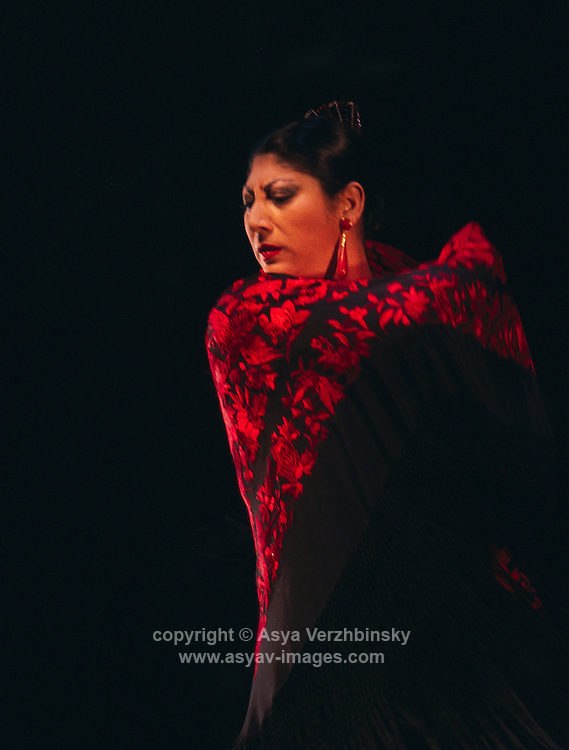 Flamenco Festival-London 2004<br />