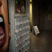 Ireland: General view of the entrance hall at the Billion Euro House art installation by the Irish artist Frank Buckley. ..Worthless euros, taken out of circulation and shredded by Irelands Central Bank, formes the interior walls of an apartment that Mr. Buckley does not own in a building left vacant by the countrys economic ruin...The artist decided to call the apartment  built from thousands of bricks of shredded, decommissioned cash (each brick contains, roughly, what used to be 50,000 euros)  the Billion Euro House. He reckons that about 1.4 billion euros actually went into it, but the joke, of course, is that it is worth simultaneously so much and so little...A large gravestone beside the main door, announces that Irish sovereignty died in 2010, the year that the government accepted an international bailout so larded with onerous conditions that the Irish will be paying for it for years to come. (Paulo Nunes dos Santos/Polaris)