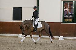 Wolfram Wittig, (GER)<br /> Greatest Dressage Horses Ever, Valegro<br /> Global Dressage Forum<br /> Academy Bartels - Hooge Mierden 2015<br /> © Hippo Foto - Dirk Caremans<br /> 27/10/15