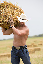 muscular shirtless cowboy working in a field with hay bales